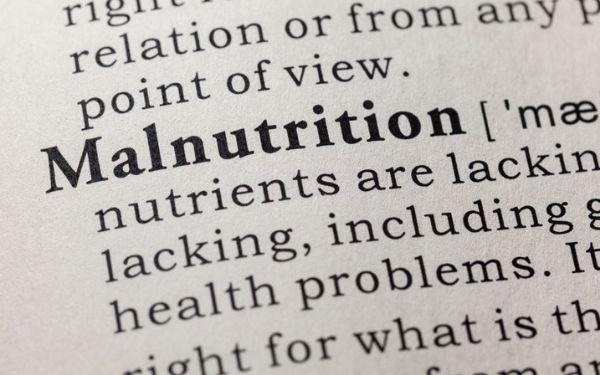 malnutrition treatment